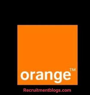 Summer Internship - Business Partner At Orange Egypt
