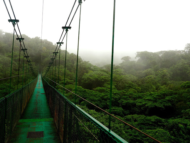 Hanging bridge in the cloud forest, Monteverde, Costa Rica