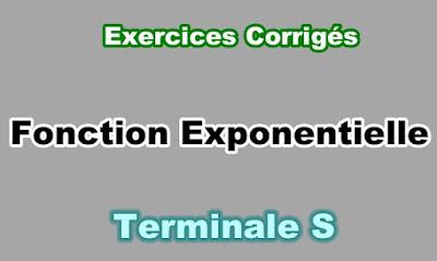 Exercices Corrigés de Fonction Exponentielle Terminale S PDF