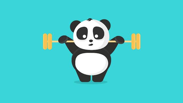 girly panda wallpaper