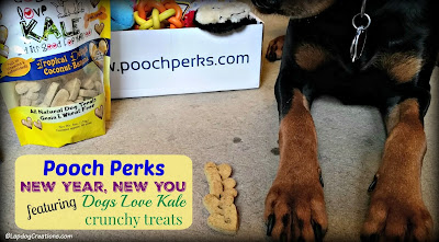 pooch perks dog subscription box treats