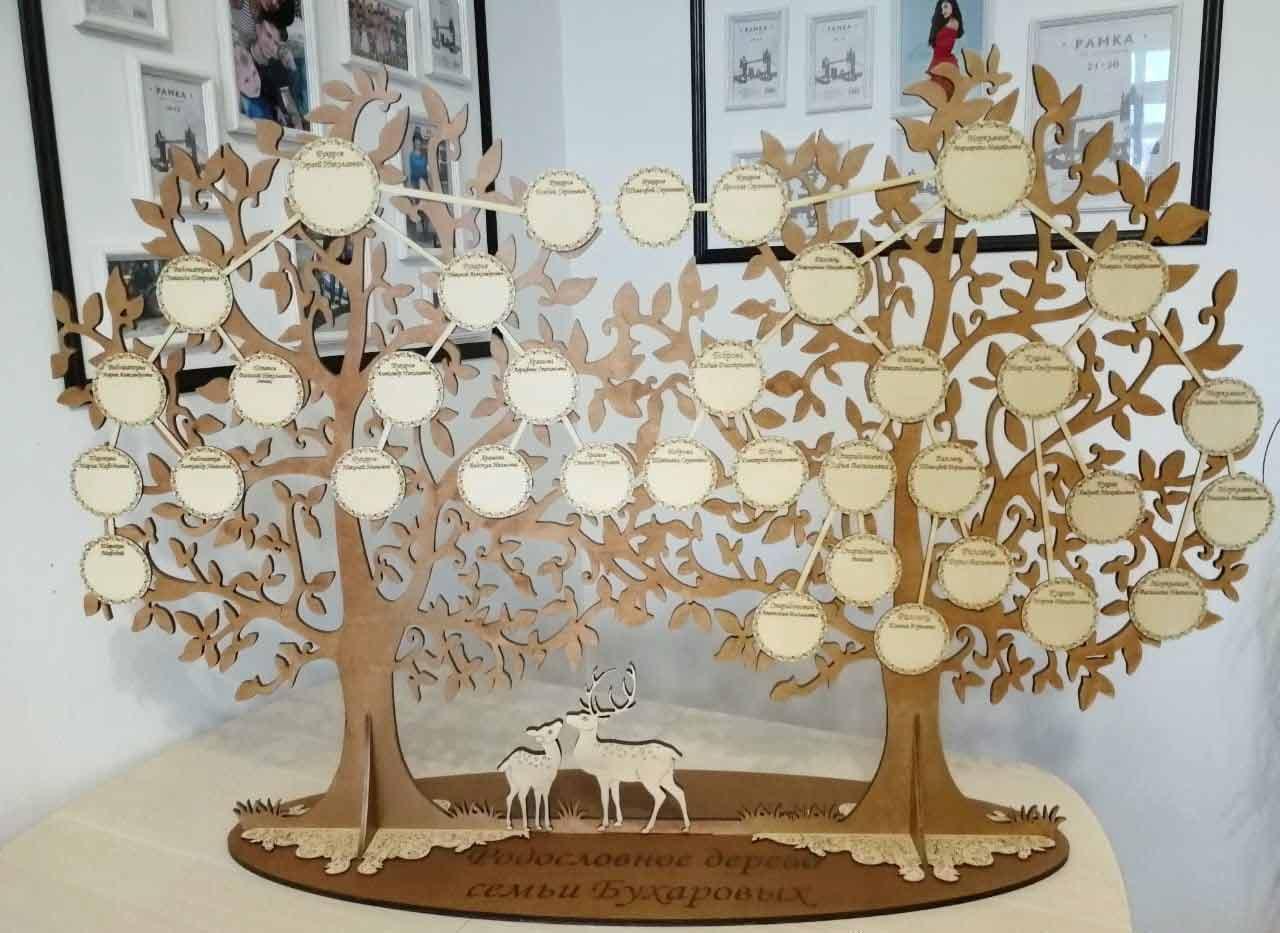 вариант как сделать фото с древом жизни возникновении контагиозного моллюска