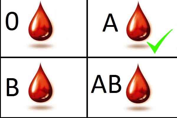 dieta grupo sanguineo ab negativo