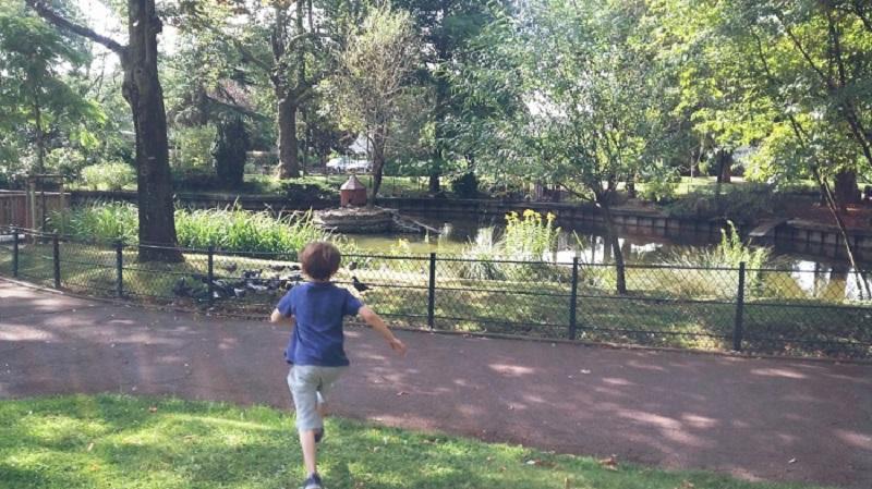 Parc Gainville ou parc des cygnes (Aulnay-sous-Bois)