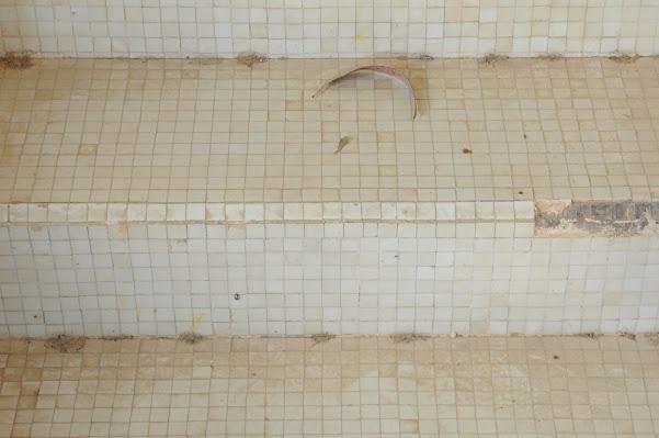 Chi tiết mũi bậc tam cấp ốp gạch mosaic