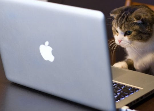 Apple Bilgisayarlarda Yeni Virüs Tehlikesi!