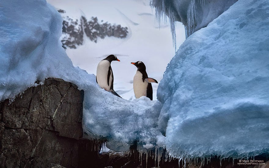 Snow Falling Video Wallpaper Cold Yet Beautiful Photos Of Antarctica Taken By Airpano