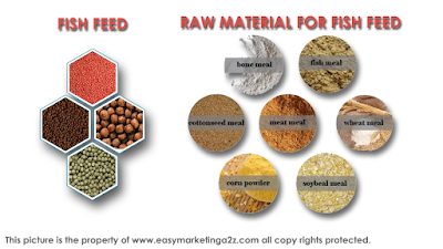 Fish feed and its raw material to make fish feed