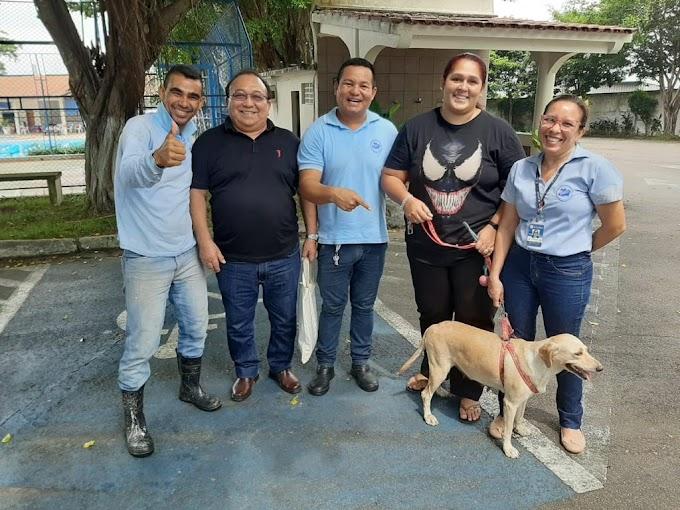 Cadelinha de rua recebe ajuda de associados da Affeam e encontra lar adotivo