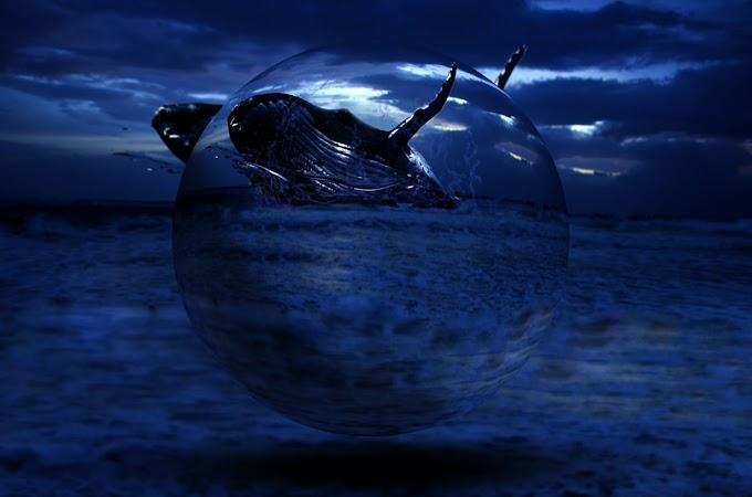 Photo Imagination - Ilusi