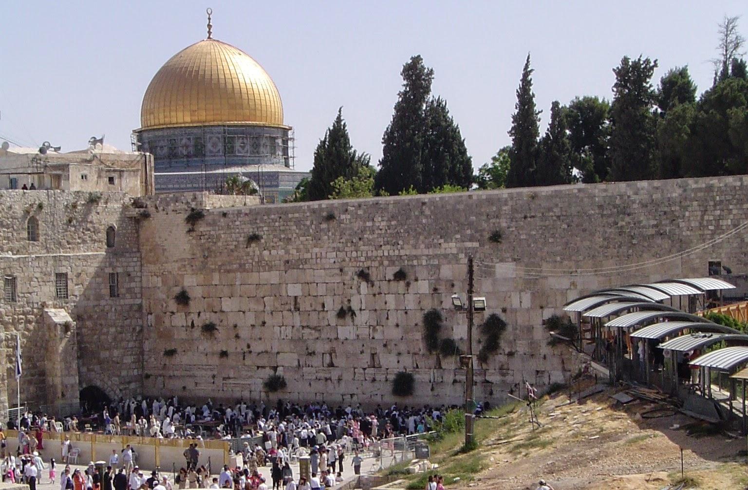 Jew Detector: Timothy McKeown: Israel 2014