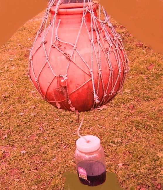 Organic Crop Nutrient Vermiwash Preparation and Use of Liquid Fertilizer .