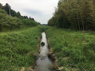 清風苑前の水路