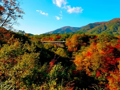Tohoku - place to see red leaves when Japan is in autumn
