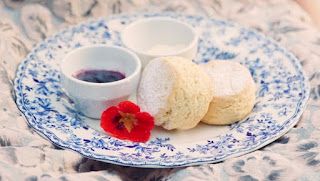 Devonshire Tea at Elizabeth Farm Tea Rooms