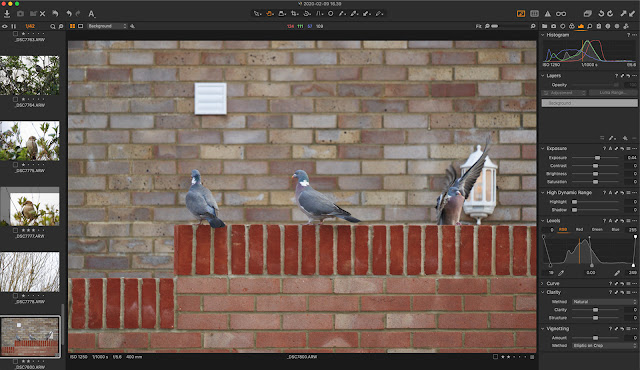 Capture One interface with edits for contrast