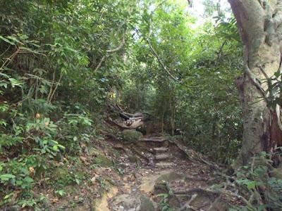 Moongate trail
