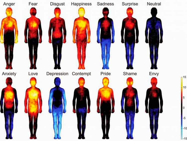 Wondering where you feel emotions in your body? These heat maps will shed light on the subject