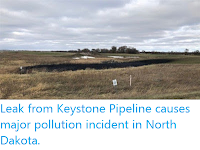 https://sciencythoughts.blogspot.com/2019/11/leak-from-keystone-pipeline-causes.html