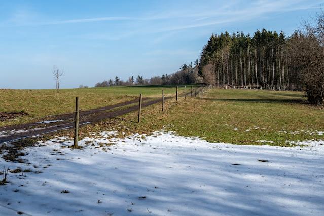 Felsentour Herbstein | Extratour Vogelsberg | Wandern in Hessen 13