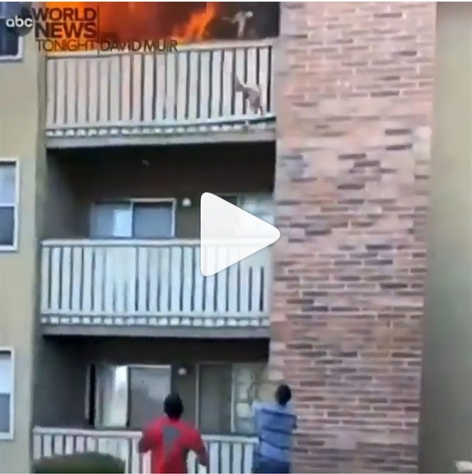 Moment man catches a 3-year-old boy who was thrown by his mother from a burning apartment on the third floor (video)