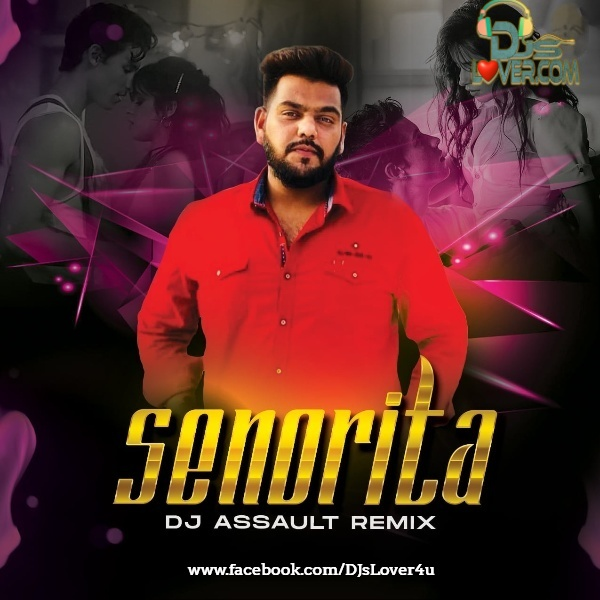 Señorita Remix DJ Assault
