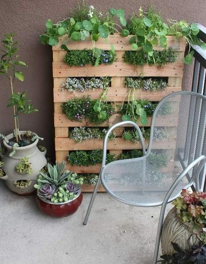 Dishfunctional designs creative ways to use pallets for Dishfunctional designs garden