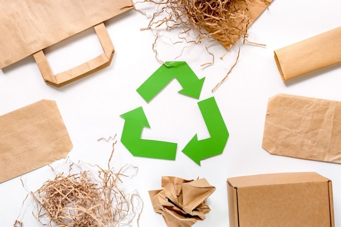 Why Eco-friendly Packaging Is Beneficial For Environment?