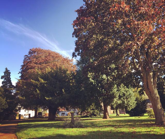 Autumn churchyard
