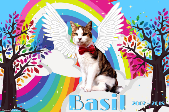 Wing Commander Basil - The B Team BBHQ @BionicBasil®