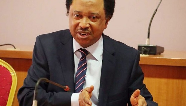 Shehu Sani Reacts As Pres. Buhari Issues Stern Warning To Cabal