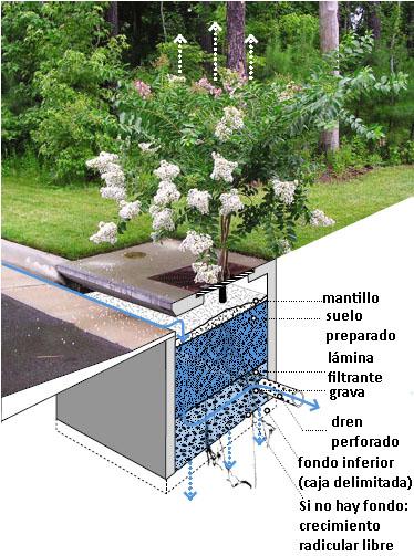 Paisajismo pueblos y jardines los jardines pluviales - Jardineras para jardin ...