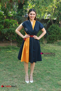 Actress Hansika Motwani Latest Pos at Bogan Movie Press Meet  0058.jpg