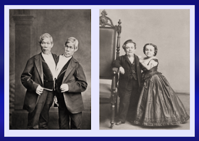 """Cheng and Ang, the """"Siamese Twins,"""" and General and Mrs. Tom Thumb."""