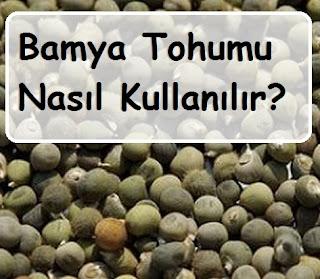 Bamya Tohumu Nasıl Kullanılır