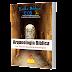 Arqueologia Bíblica (E-book)