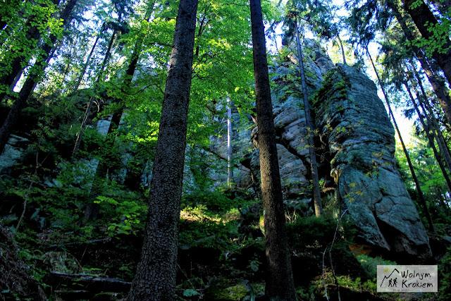 Pielgrzym Park Narodowy Gór Stołowych