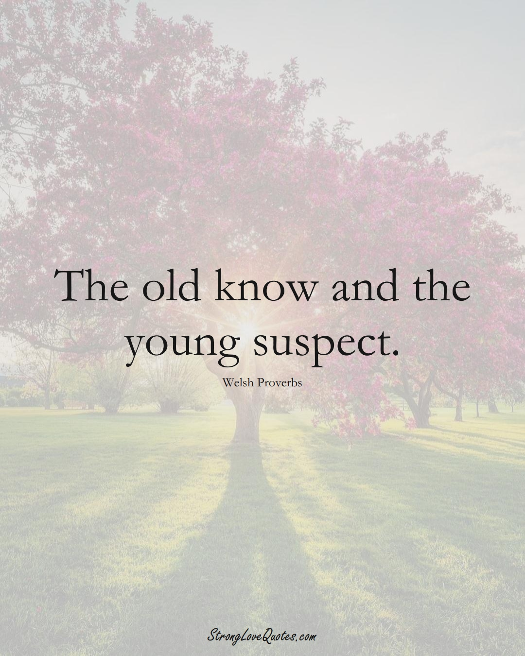 The old know and the young suspect. (Welsh Sayings);  #EuropeanSayings