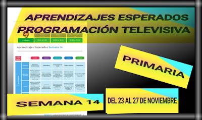 APRENDIZAJES ESPERADOS Y PROGRAMACIÓN TELEVISIVA-SEMANA 14 DEL 23 AL 27 DE NOVIEMBRE DEL 2020-PRIMARIA