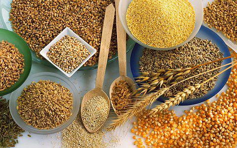 Cereal, Origem e Cultivo de Cereais