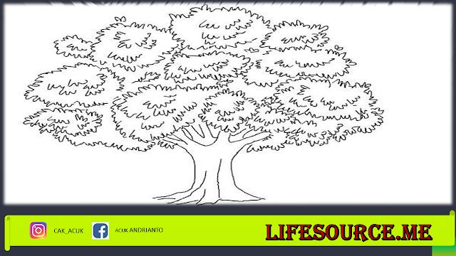 psikotes gambar pohon