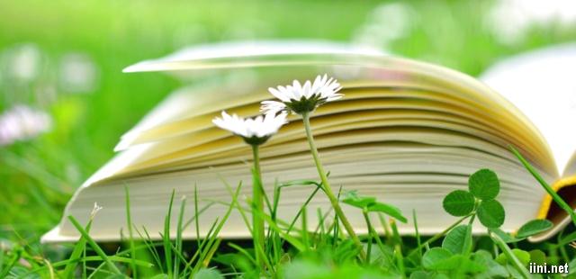ảnh sách và hoa cỏ thật đẹp.