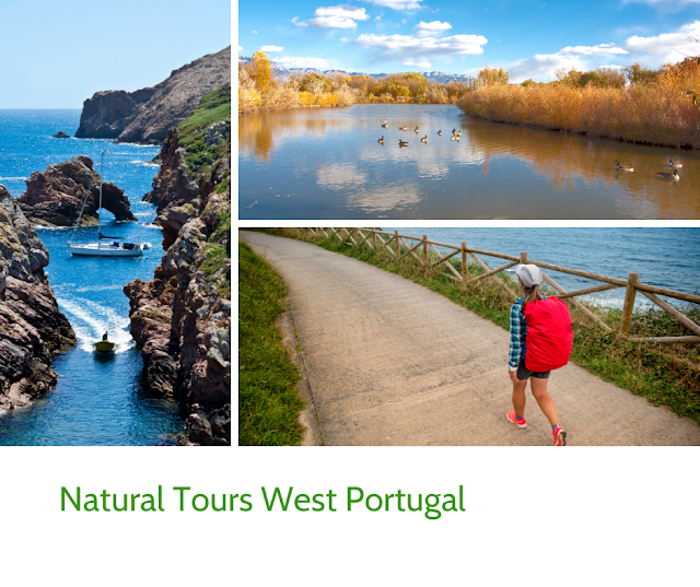 Natural Tours West Portugal