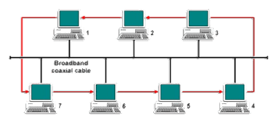 Various types of computer network topology