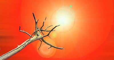 Sol-e-aquecimento-global