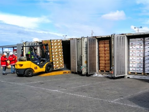 Import Borongan (ALL-IN)