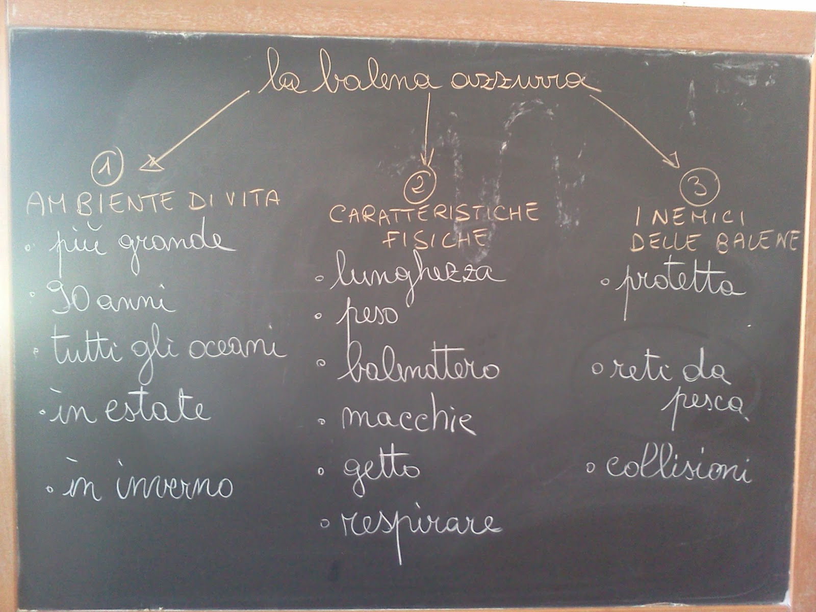 Diario di classe testo informativo dal testo allo schema delle parole chiave - Testo i giardini di marzo ...