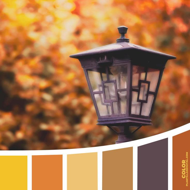 color_588