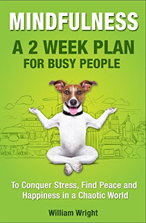 MINDFULNESS: A 2 Week Plan for Busy People to Conquer Stress, Find Peace and Happiness in a Chaotic World