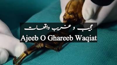 Herat-angez-waqiat-ajeeb-o-ghareeb-waqiat-Urdu-Hindi